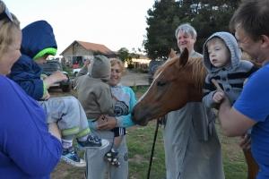 Поездка детей из ЦСРД на конную базу.
